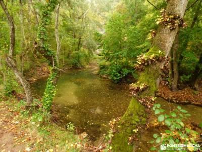 Hoces Río Duratón-Sepúlveda; la panera segovia valle de jerte calas alicante pueblos cerca de mad